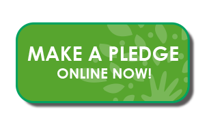 grow-to-give-online-pledge-button
